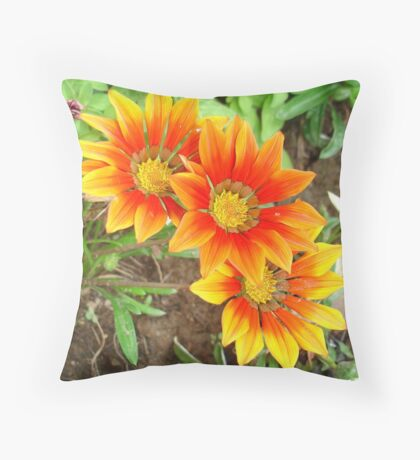 Three Bright Colored Gazania Flowers and Garden Throw Pillow