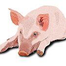 Müdes Schwein von Lana Petersen