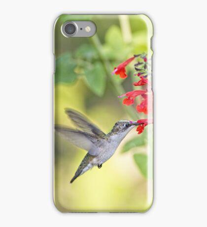Hummingbird and Red Salvia iPhone Case/Skin