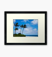 Palm trees by the ocean Framed Print