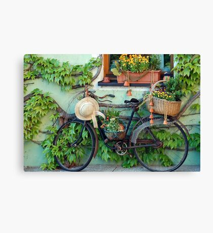 Never dump your old bike Canvas Print