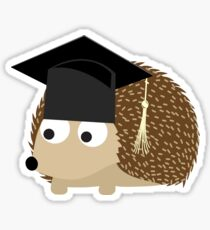 Cute Hedgehog Graduate Sticker
