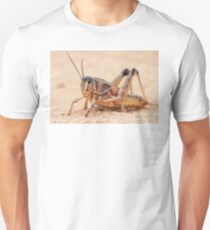 Grasshopper on Display T-Shirt