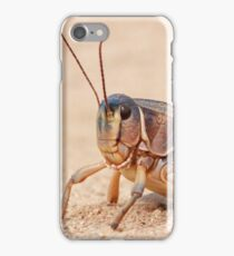 Grasshopper on Display iPhone Case/Skin