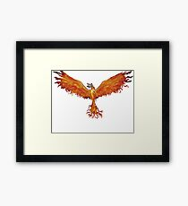 Phoenix Team Framed Print