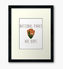National Parks are Dope Framed Print