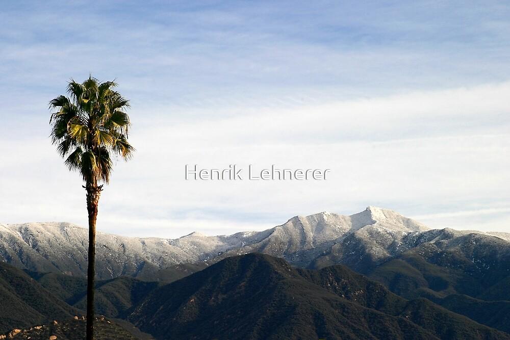 Southern California Snow by Henrik Lehnerer