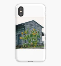 REPLICA OF GEORGE ROGERS CLARK CABIN iPhone Case/Skin