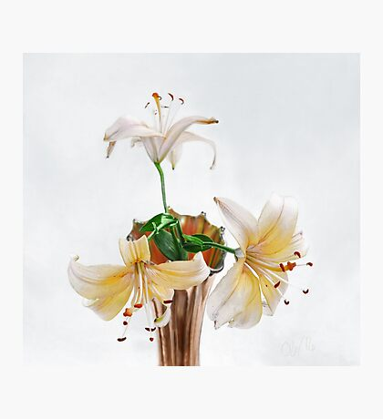 Three Pale Gold Lilies Still Life Photographic Print
