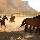 Cowboys and horses by Andrea Kennedy