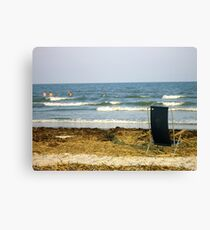 South Carolina Relaxing Canvas Print