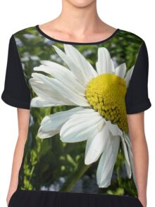 Close Up Common White Daisy With Garden  Women's Chiffon Top