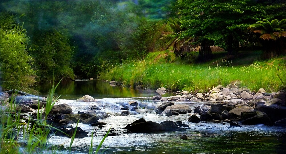 Mountain Stream by Glen Johnson