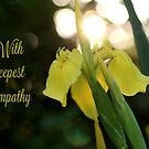 With deepest sympathy by Astrid Ewing Photography