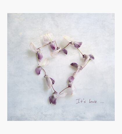 It's Love Wisteria Petals Heart Photographic Print