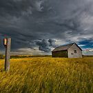 Approaching Storm by IanMcGregor