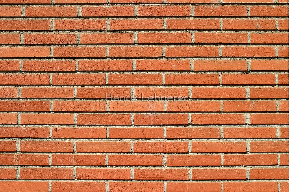 Bricks Wall by Henrik Lehnerer