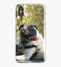 Doggy Having Fun iPhone Case/Skin