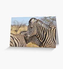 Zebra Love - Wildlife Background from Africa Greeting Card