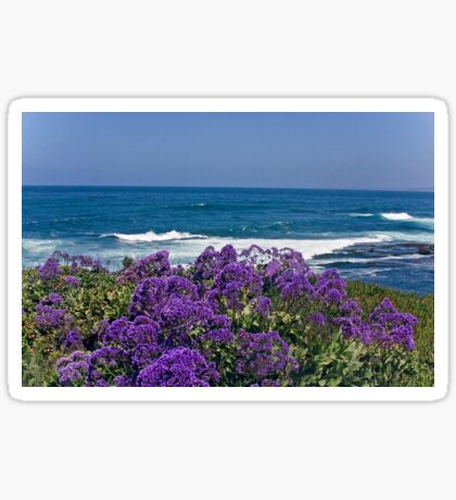 La Jolla Coast IV Sticker