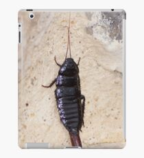 insect. iPad Case/Skin