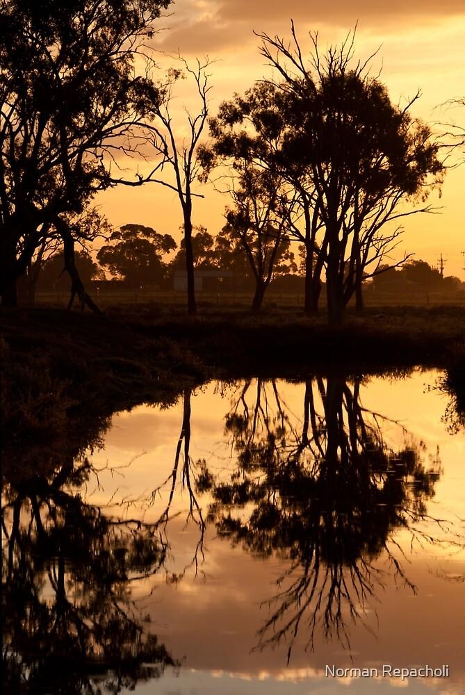 Reflections - Tongala Victoria Australia by Norman Repacholi