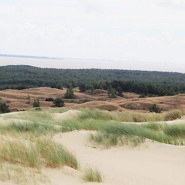 Dunas de arena de Lituania de mlleruta