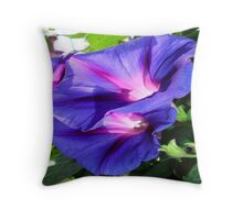 A Pair of Vibrant Morning Glories In Full Bloom Throw Pillow