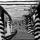 Path Of Shadows  by EOS20