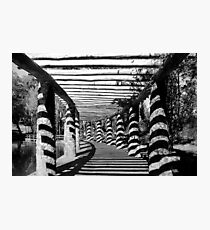 Path Of Shadows  Photographic Print