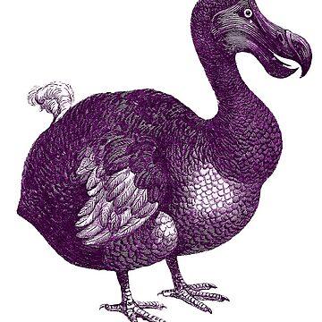 Vintage Dodo Bird Illustration by hiway9