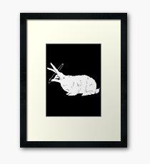 Hillary White Rabbit Framed Print