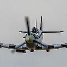 Head On Spitfire by Lee Wilson