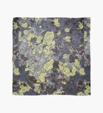 Lichen and Rock Scarf