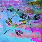 Mauritius Vintage Dragonflies Colours B by Vitta