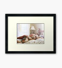 Tankjoey - cottage sun rays Framed Print