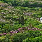 Irish cottage in the hills by David Chesluk