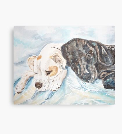 Dogs Resting  Canvas Print