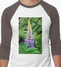 Lovely Lupin Men's Baseball ¾ T-Shirt