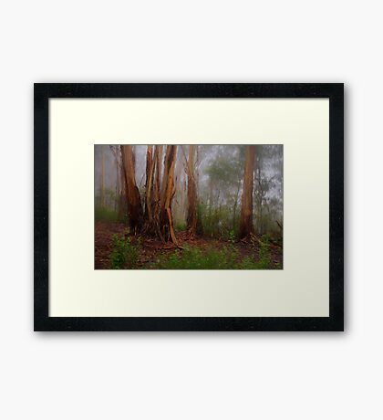 Byways are My Ways  - Mount Wilson  NSW - The HDR Experience Framed Print