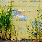 Tear Down Your Walls by Scott Mitchell