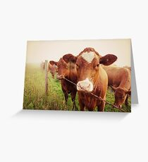 I herd about you... Greeting Card