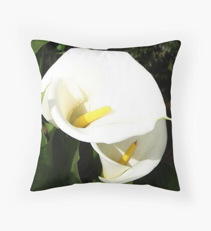 Beautiful White Calla Flowers In Bright Sunlight Throw Pillow