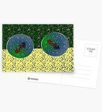 Symmetry Postcards