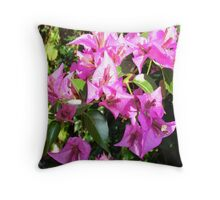 Purple Pink Bougainvillia In Blossom  Throw Pillow