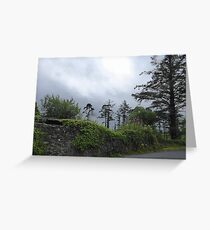 A Soft Irish Day Greeting Card