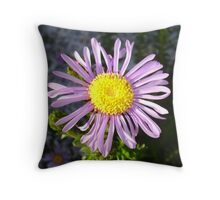 Magenta Aster - A Star of Love and Fidelity Throw Pillow