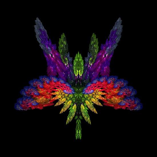 Butterfly by Shelley Heath