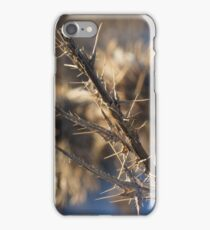 Closeup of a brown thistle stem in winter macro iPhone Case/Skin