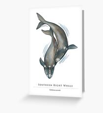Southern Right Whales - Fight for the Bight Greeting Card